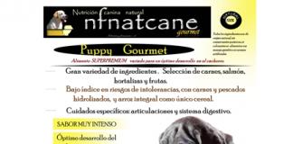puppy-gourmet