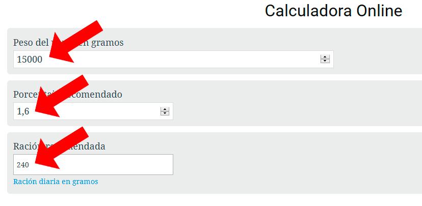 ejemplo-de-uso