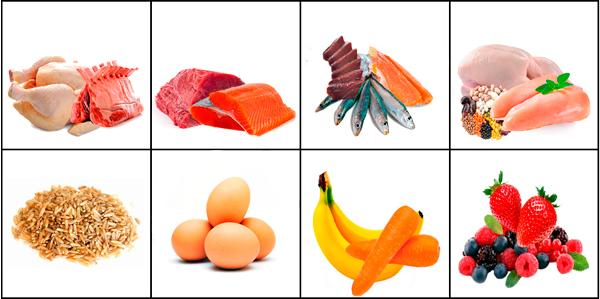 select-gourmet